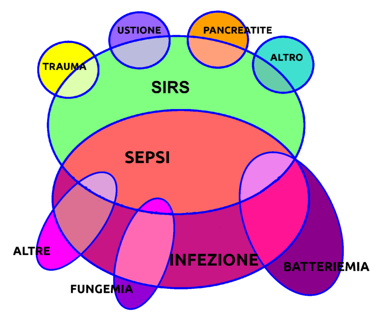 Venn Diagram illustrating inter-relationship between infections